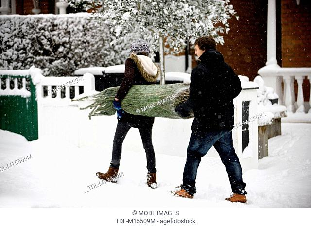A young couple carrying a Christmas tree along a snowy street