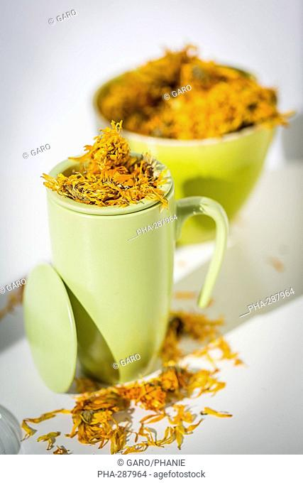 Marigold petals herb (Calendula officinalis) infusion