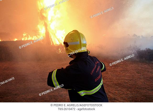 Forest fire in the Serra do Careon, Province of Lugo, Galicia, Spain (09/08/2015)