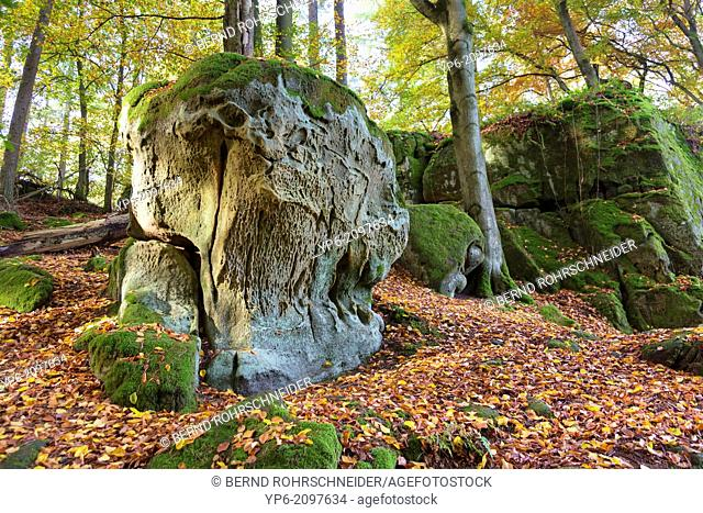 rocks and forest in autumn, German Luxembourgian Nature Park, near Irrel, Germany