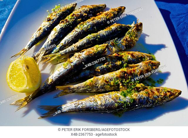 Sardines grilled Andalucian style, Parc de la Pau, Sant Marti district, Barcelona, Spain