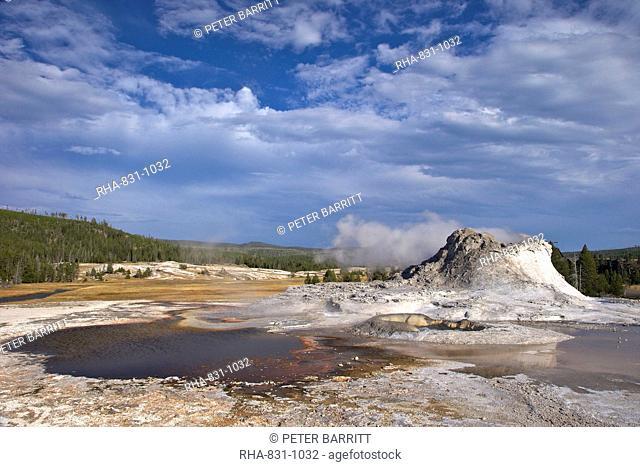 Castle Geyser, Upper Geyser Basin, Yellowstone National Park, UNESCO World Heritage Site, Wyoming, United States of America, North America