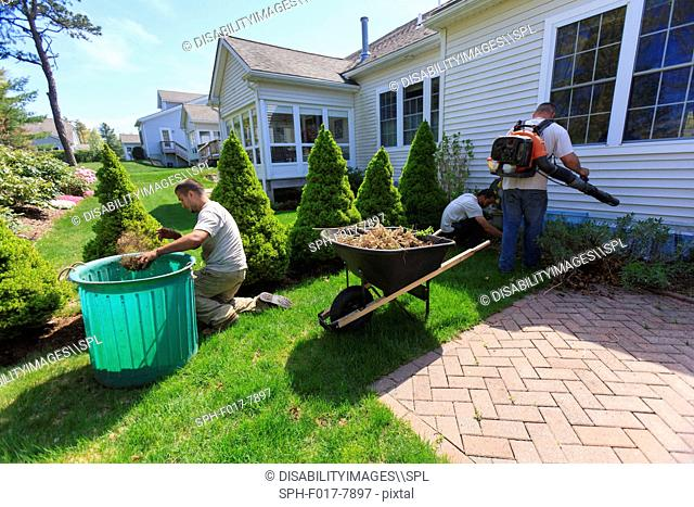 Landscapers clearing weeds at a home garden and using a blower for cleaning