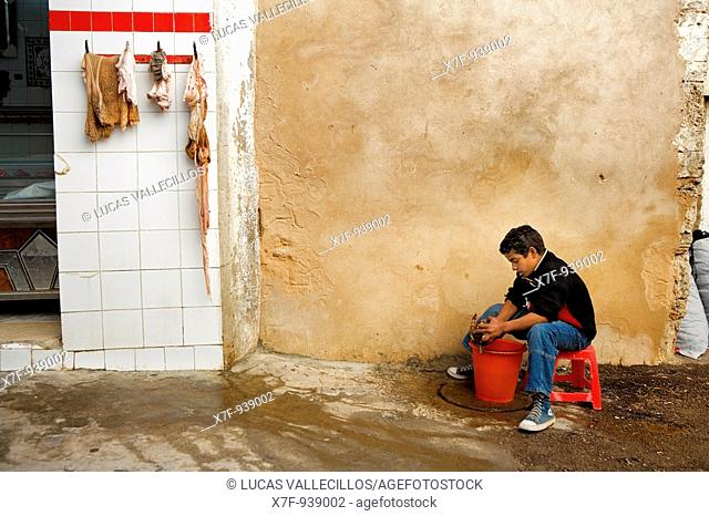 Tunez: Sfax Medina Butcher's shop Child cleaning a goat head