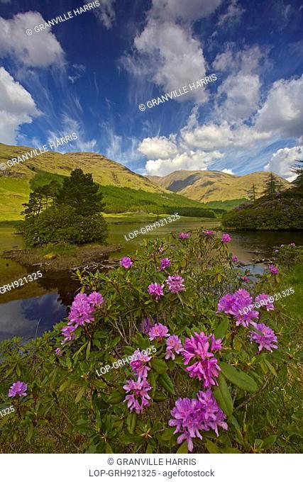 Scotland, Argyll and Bute, Glen Etive. A view of Lochan Urr in Glen Etive
