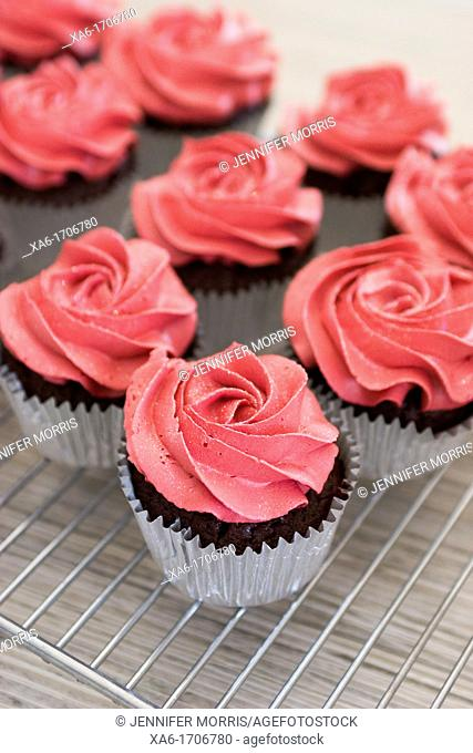 Chocolate cupcakes in silver cases with deep pink icing roses on them stand on a cooling rack