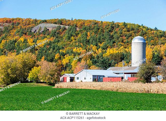 Farm, Dutch Valley, New Brunswick, Canada