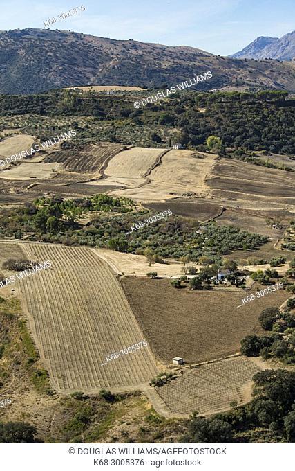 Farmlands, Ronda, Malaga, Spain