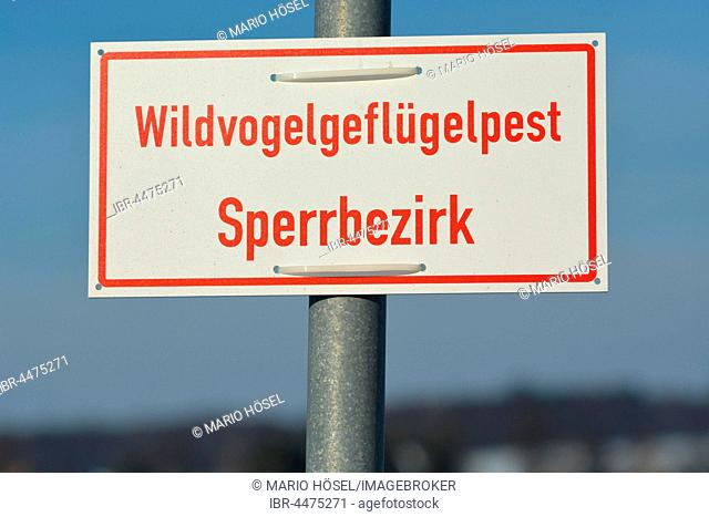 Warning sign, wild bird avian influenza restricted area, in Geringswalde, Saxony, Germany
