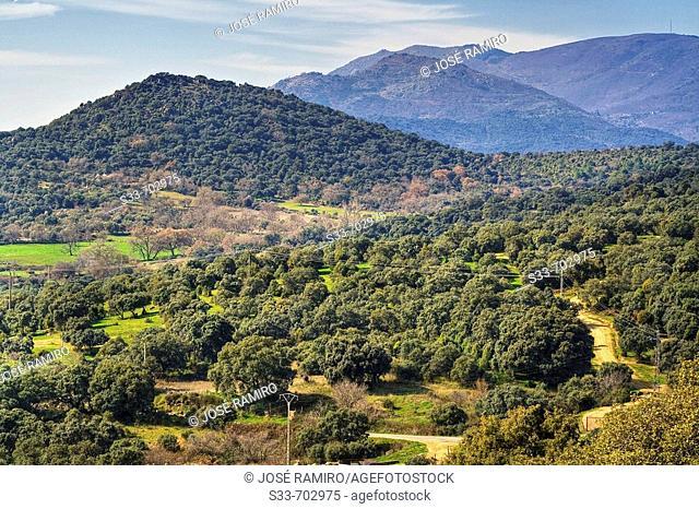 Cerro del Águila. Montes de Toledo. Pelahustán. Castilla la Mancha. Spain