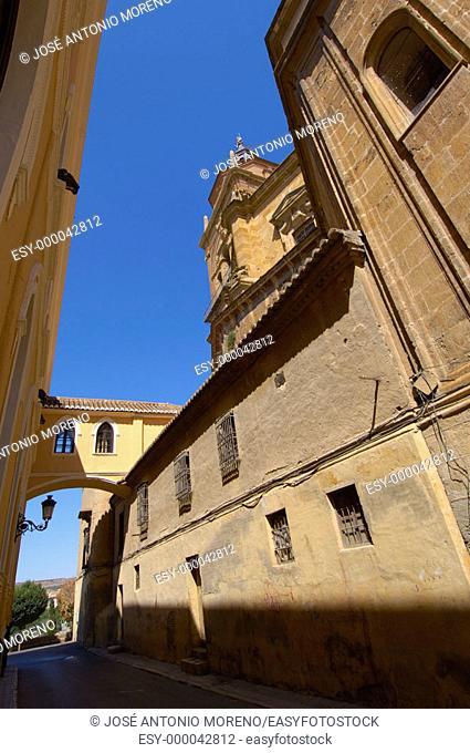 Arco del Palacio street and cathedral, Guadix. Granada province, Andalusia. Spain