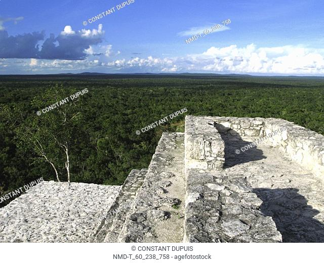 High section view of a pyramid, Mayan Ruins, Calakmul, Campeche, Mexico