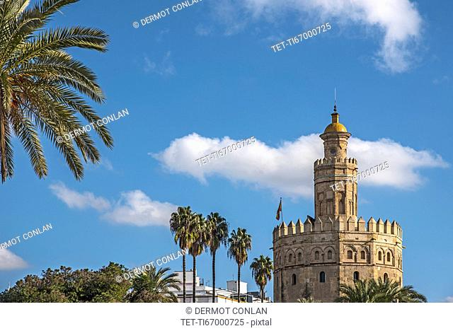 Spain, Seville, Torre Del Oro on sunny day
