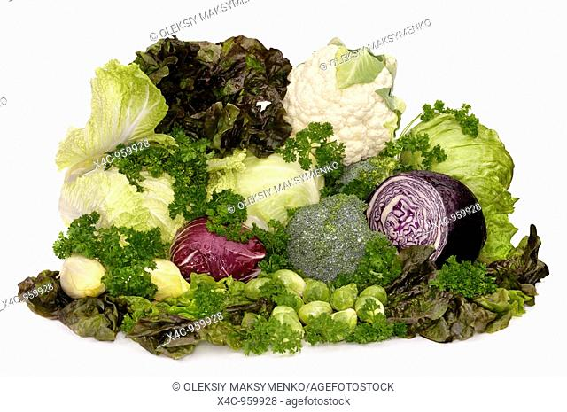 Food still life with all sorts of fresh juicy vegetables and greens Cauliflower, broccoli, green cabbage, red cabbage, head lettuce, red leaf lettuce