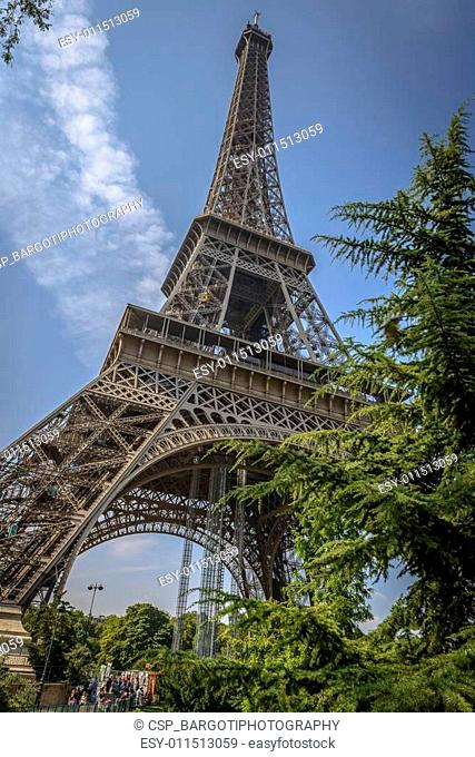 Eiffel Tower view through some trees in a summer clear day