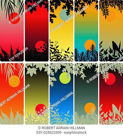Set of editable vector vertical banners of plants