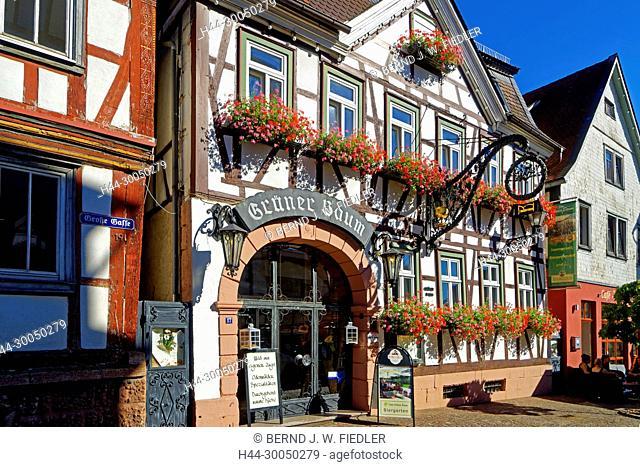 Inn, to the green tree, Michel Stadt Deutschland