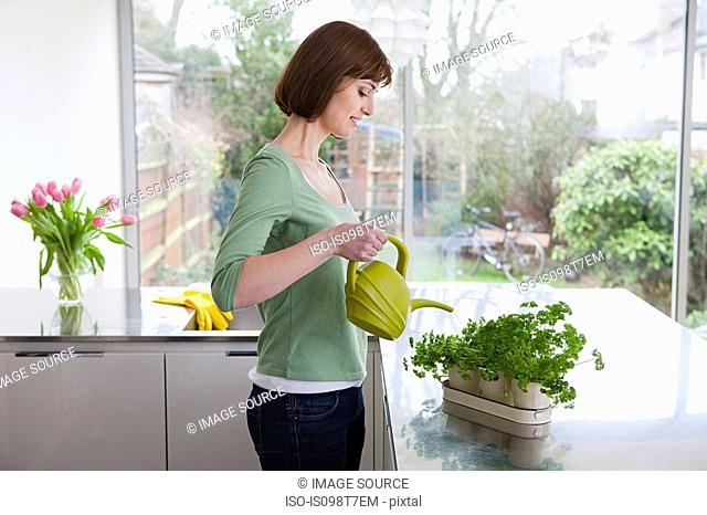 Woman watering herbs