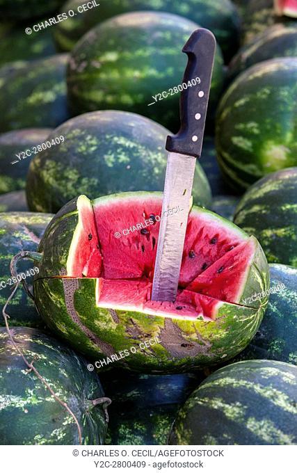 Elkhorbat, Morocco. Sample Watermelon for Sale in the Market