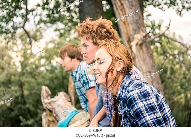 Side view of young men with woman sitting together on fallen tree