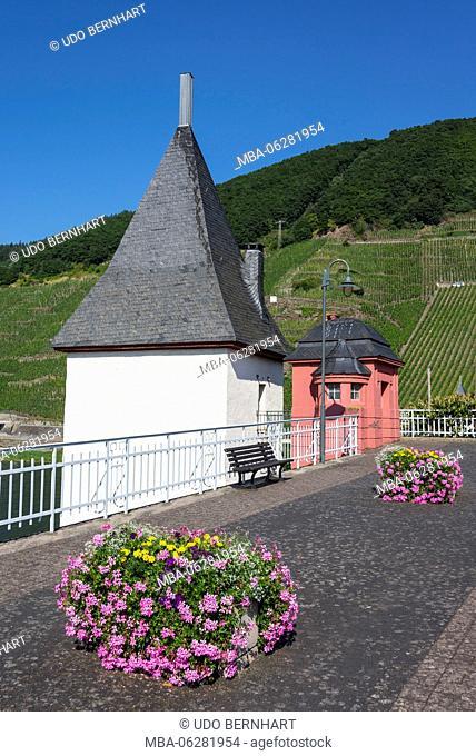 Europe, Germany, Rhineland-Palatinate, district Trier-Saarburg, the Moselle, Mittelmosel, roman wine road, Trittenheim (village)