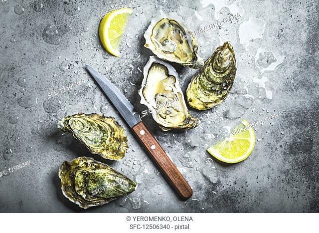 Closed and open oysters with a knife on a grey