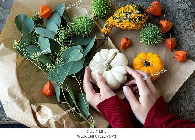 Autumnal decoration, woman's hand taking ornamental pumpkin