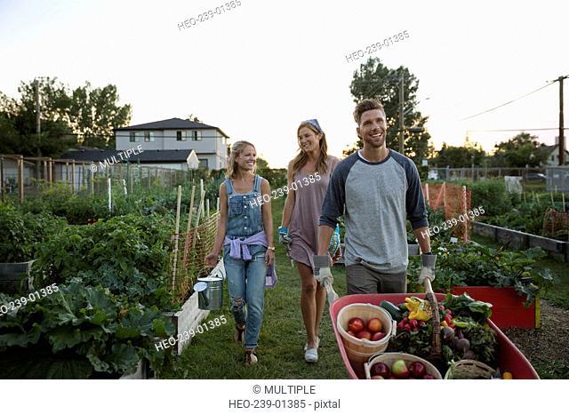 Friends harvesting vegetables in community garden