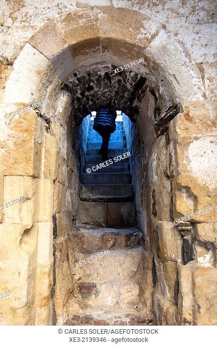 Subiendo las escaleras, Salamanca