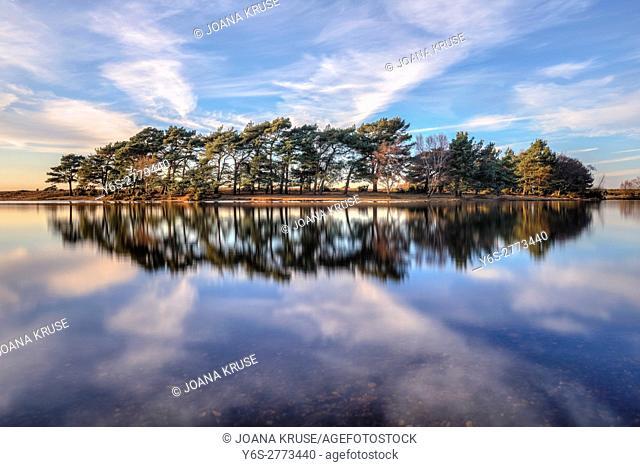 Hatchet Pond, New Forest National Park, Beaulieu, Hampshire, England, UK