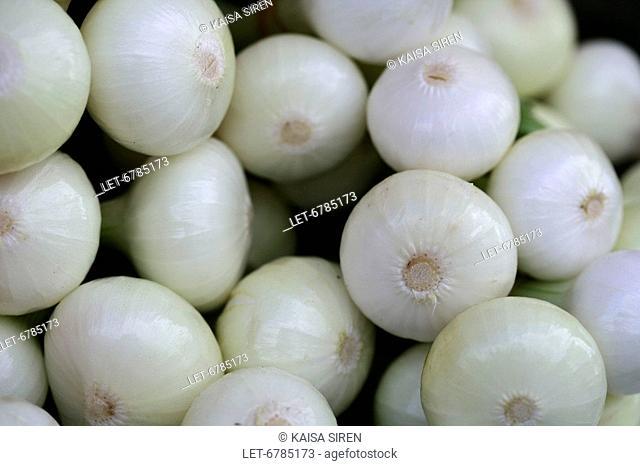 Onions at the market  Rovaniemi, Finland