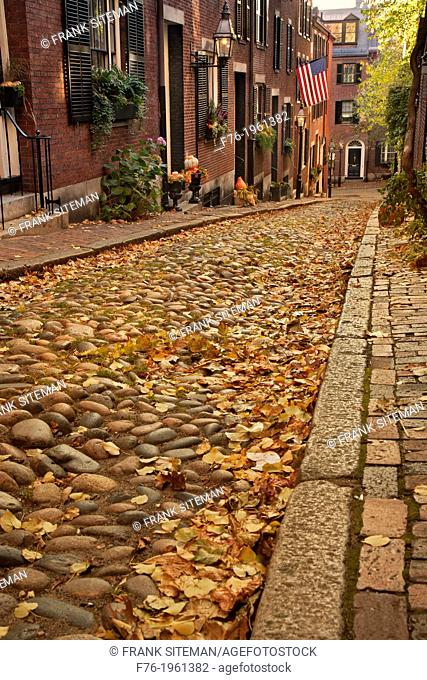Acorn street is located on Beacon Hill is one of the most famous streets in Boston, MA. It dates back to the 1820s and is an historical