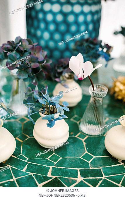 Plants in little vases