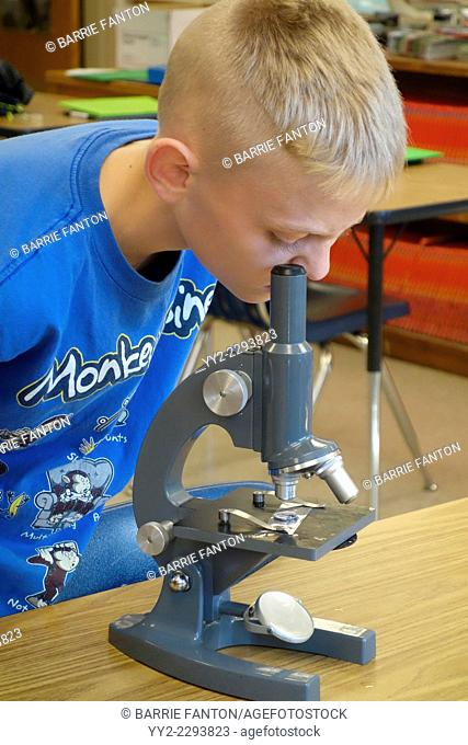 11-year Old Boy Using Microscope, Wellsville, New York, United States