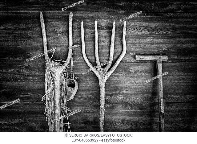 Old wooden rakes for plowing, detail of farm tools. Spain