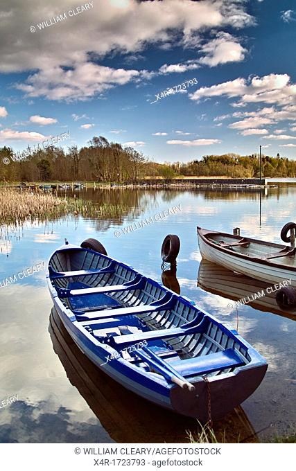 Rowing boats moored at Tudenham, Lough Ennell, County Westmeath, Ireland