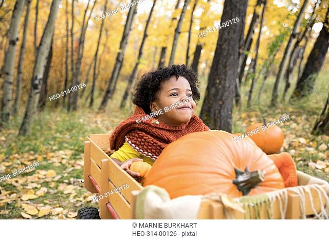 Smiling girl riding in wagon with autumn pumpkins in woods