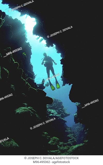 Diver heading inside coral reef crevice. Roatan. Honduras