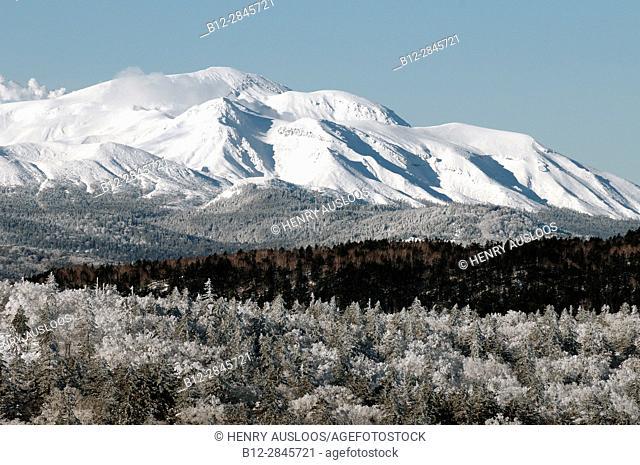 Landscape in winter of Hokkaido, Japan