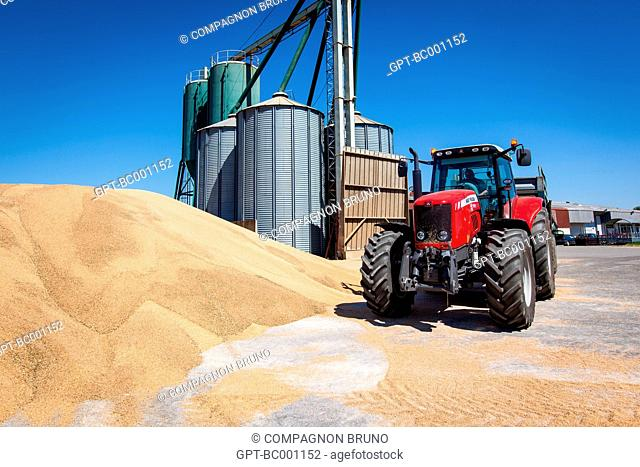 DELIVERY OF THE WHEAT HARVEST AT THE SILO OF THE GRAIN COOPERATIVE OF ESSAY, ORNE (61), FRANCE
