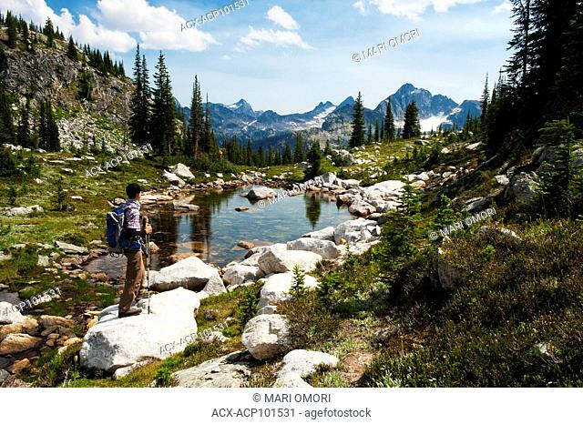A hiker takes a break to look at the view along Gwillim Lake trail in Valhalla Provincial Park. Model Release signed