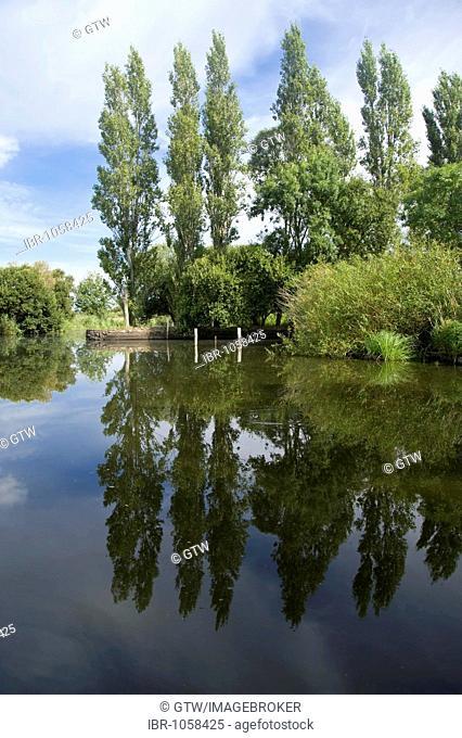 Ile de Feudrin, Site of the Ramsar Convention on Wetlands, Regional Natural Park of La Brière or Grande Brière, Pays de Loire, France, Europe