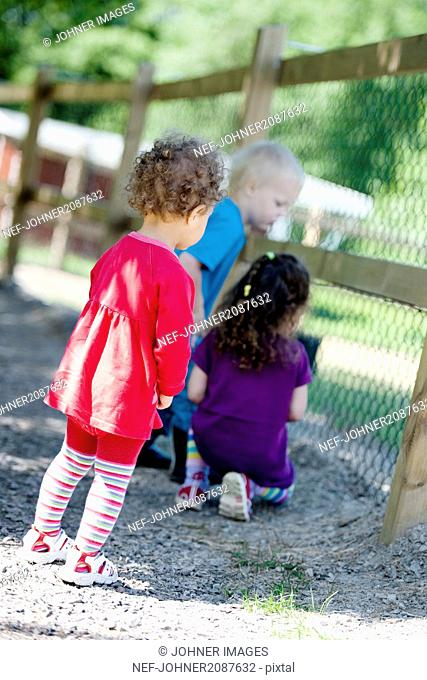 Boy and girls looking through fence