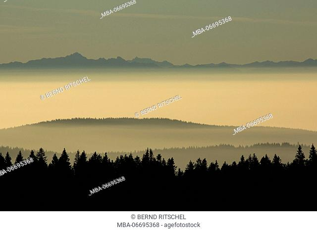 Panoramic view at the Herzogenhorn at sunrise, Black Forest, Baden-Wuerttemberg, Germany