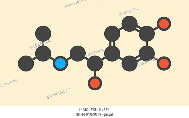 Isoprenaline (isoproterenol) drug molecule. Used in treatment of bradycardia, heart block and asthma. Stylized skeletal formula (chemical structure): Atoms are...