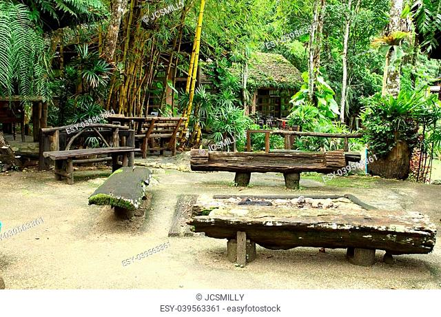 Pivnic wooden set in bamboo forest