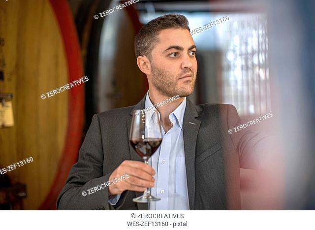 Young man testing red wine at wine estate