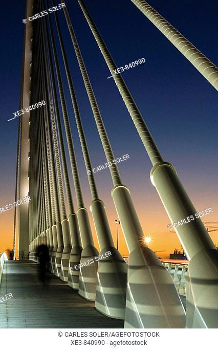 Vista de la Ciudad de las Artes y las Ciencias desde el puente de l'Assut d'Or, Valencia
