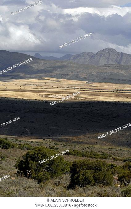 Panoramic view of a landscape, Oudsthoorn, George, Little Karoo, Karoo, Western Cape Province, South Africa