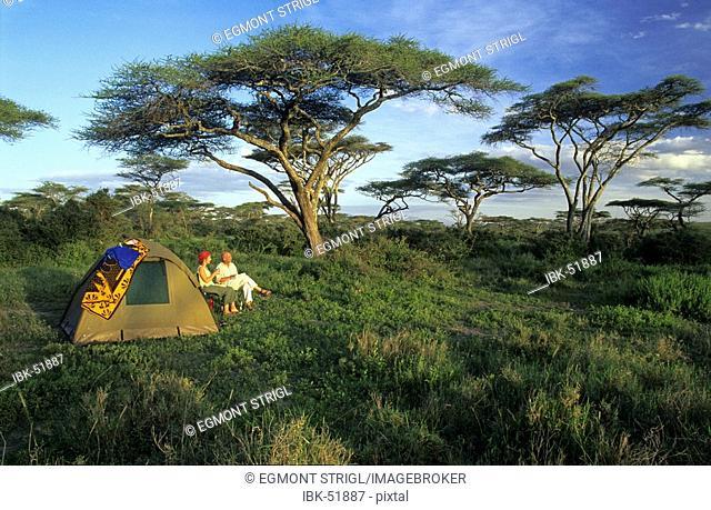 Str-MR08-günterele, tent in the acacia forest near Ndutu Lake, Serengeti National Park, Tanzania